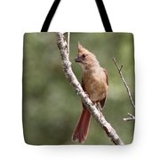 The Youngster Tote Bag