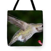 Thirsty Critter Tote Bag
