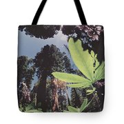 This Shot Is An Enlargement Of 55f13 Tote Bag