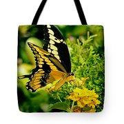 Thoas Swallowtail #1 Tote Bag