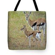 Thomsons Gazelle Tote Bag