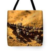 Thorny Devil Tote Bag