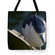 Thoughtful Bird Tote Bag
