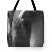 Thoughts Of The Elephant Tote Bag