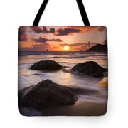 Three Against The Tide Tote Bag