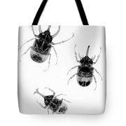Three Beetles X-ray Tote Bag