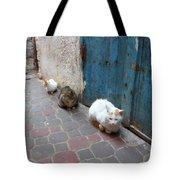 Three Cats In Essaouira Tote Bag