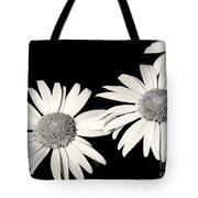 Three Daisy Amigos Tote Bag