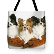 Three Dogs Tote Bag