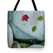 Three Fallen Leaves Lie On A Rock Tote Bag