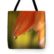 Three Friends Hangin' Out Tote Bag