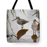 Three Long Billed Dowitchers Tote Bag