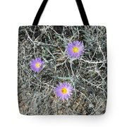 Three Lovelies Tote Bag