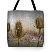 Three Prickly Teasels Tote Bag