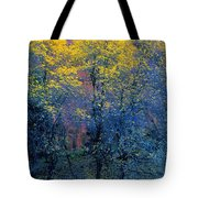 Three Thin Autumnal Trees In Front Of Tote Bag