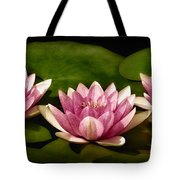 Three Water Lilies Tote Bag