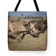 Three White Rhinos Line Up In Solio Tote Bag