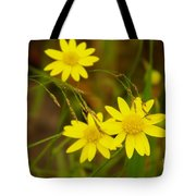 Three Yellow Amigos  Tote Bag
