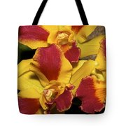 Three Yellow And Red Orchids Tote Bag