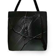Through Dreams Tote Bag