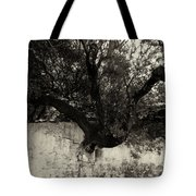 Through The Wall Bw Tote Bag