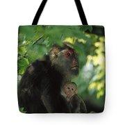Tibetan Macaque Nursing Baby Tote Bag