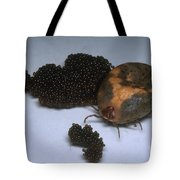 Tick With Eggs Tote Bag