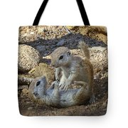 Tickle Me Tote Bag