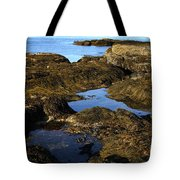 Tidepool In Maine Tote Bag