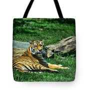Tiger - Endangered - Lying Down - Tongue Out Tote Bag