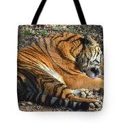 Tiger Behavior Tote Bag