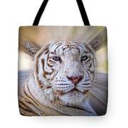 Tiger Blur Tote Bag