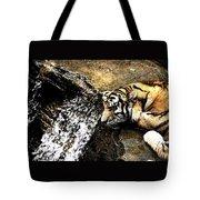 Tiger Falls Tote Bag