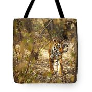 Tiger In The Undergrowth At Ranthambore Tote Bag