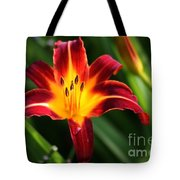 Tiger Lily0263 Tote Bag