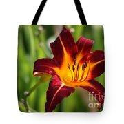 Tiger Lily0275 Tote Bag