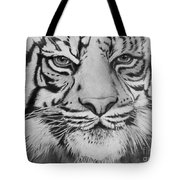 Tiger's Eyes Tote Bag