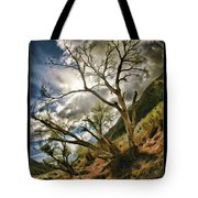 Tilted Trees Tote Bag