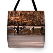 Time For Me To Fly Tote Bag