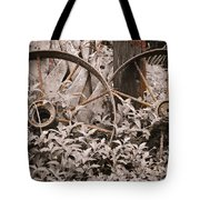 Time Forgotten Tote Bag by Carolyn Marshall