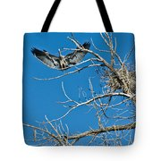 Time To Nest Tote Bag