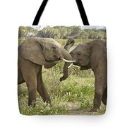Time To Play Tote Bag