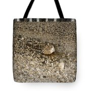 Tiny Animal Architecture  Tote Bag