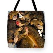 Tiny Bunnies Tote Bag