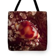 Tiny Cowrie Shell On Dendronephtya Soft Tote Bag