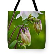 Tiny Floral Swans And Cygnets Tote Bag