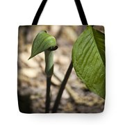 Tiny Jack In The Pulpit Tote Bag