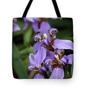 Tiny Purple Iris Tote Bag