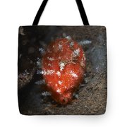 Tiny Red Yellow And White Cowrie Tote Bag