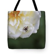 Tiny Spider  Tote Bag
